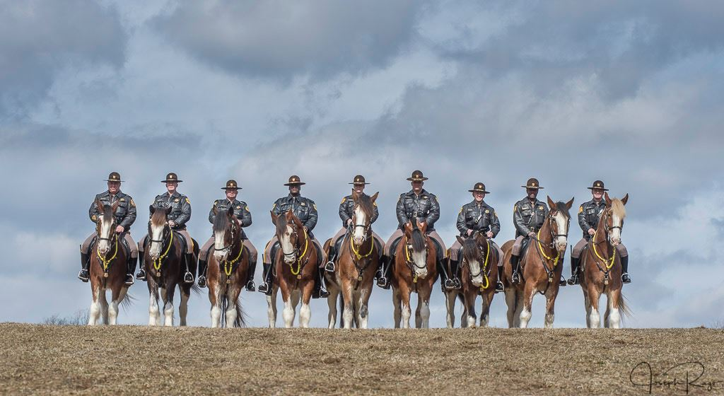 Mounted Police Unit 2-19