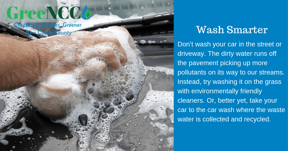 Don't wash your car in the street or driveway. The dirty water runs off the pavement picking up more